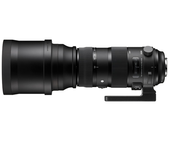 Sigma 150-600mm f5-6.3 DG OS HSM Sport - Canon Fit