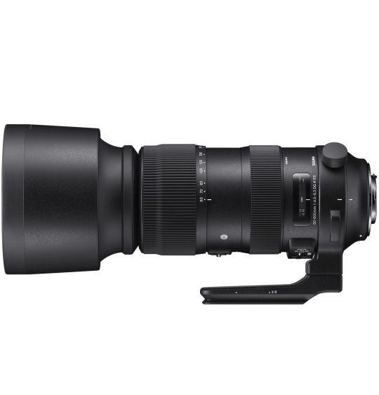 Sigma 60-600mm f4.5-6.3 DG OS HSM Sport - Canon Fit
